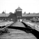 ליל סדר במחנה ריכוז – סיפור מרגש ששמעתי במהלך פינוי דירה
